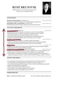 CV mal CVnerden1
